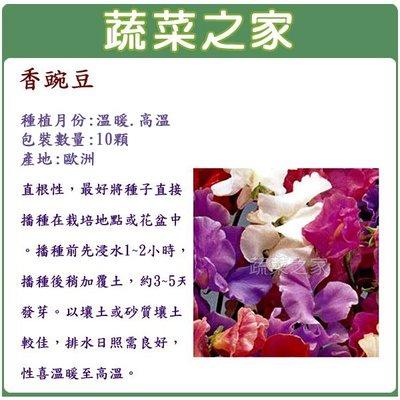 【蔬菜之家】H42.香豌豆種子(混合色...