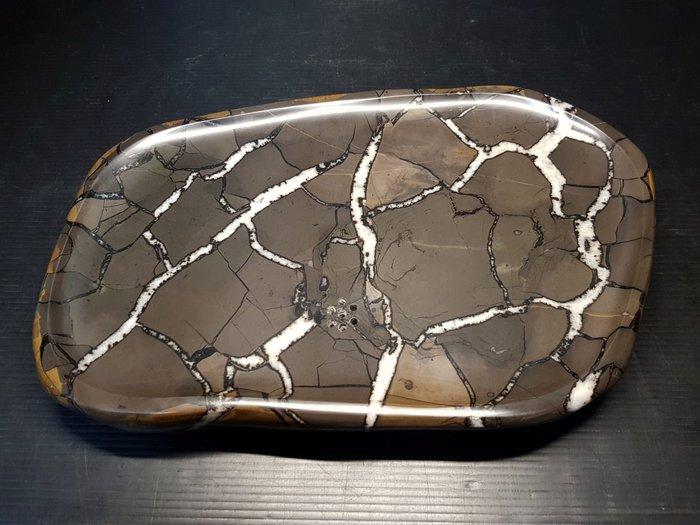 石在有趣~新石器時代/龜甲石茶盤~不小的30公分