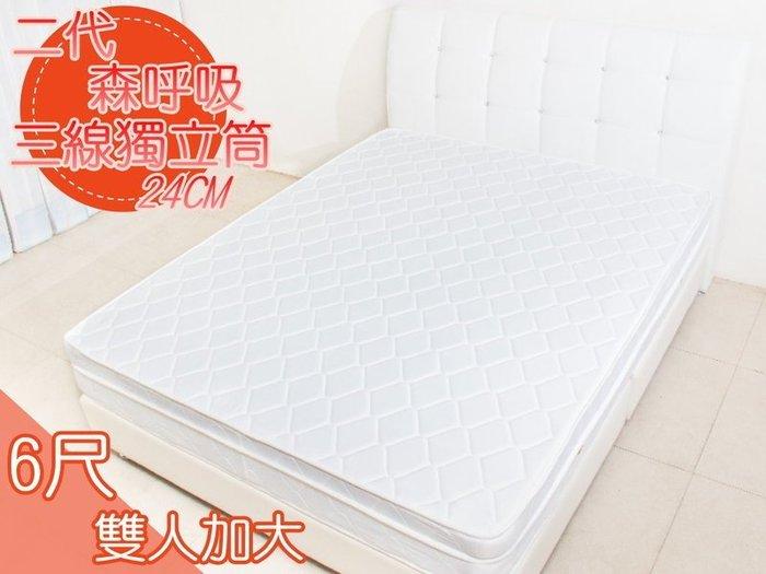 【DH】商品編號R0101厚度24CM☆二代森呼吸標準雙人6尺三線高碳鋼床墊。備有現貨可試躺。主要地區免運費