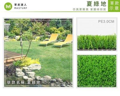【草皮達人】人工草皮PE-3.0cm 夏綠地 每平方公尺NT700元(價格已含稅,量大可議) 園藝 景觀 裝潢 空間設計