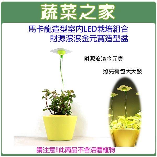 滿799免運【蔬菜之家004-J09】馬卡龍造型室內節能LED栽培組合財源滾滾金元寶造型盆(不含作物)此商品運費適用宅配