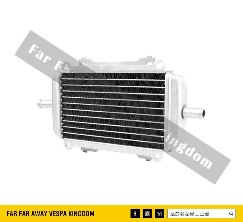 遠的要命偉士王國 Vespa 原廠 GTS/GTV/GT 原廠 冷排箱 水箱 水冷排