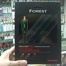 禾豐音響 皇佳 貨 美國 Audioquest Forest coax 同軸線 1.5M