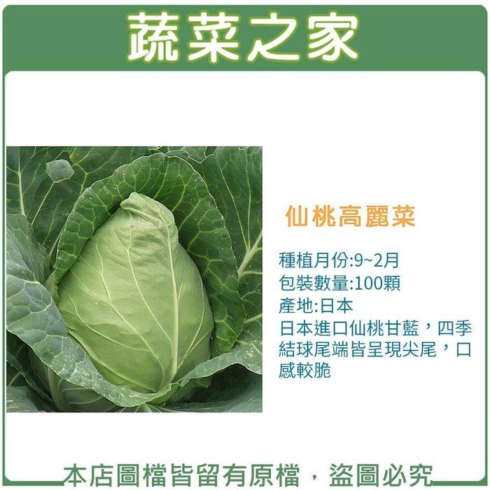 【蔬菜之家】B09.仙桃高麗菜種子100顆(仙桃甘藍,四季結球尾端皆呈現尖尾,口感較脆.蔬菜種子)