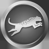 Running Wild (Silver)