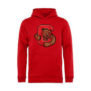 Youth Red Cornell Big Red Classic Primary Pullover Hoodie