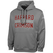 Mens Harvard Crimson Under Armour Gray Performance Hoodie