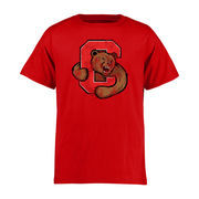 Youth Red Cornell Big Red Classic Primary T-Shirt