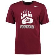 Men's Nike Maroon Montana Grizzlies Legend Logo Performance T-Shirt