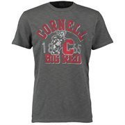 Men's '47 Brand Charcoal Cornell Big Red Vintage Scrum T-Shirt