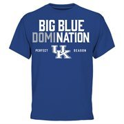 Men's Royal Blue Kentucky Wildcats 2015 SEC Men's Basketball Regular Season Champions Perfect Season Domination T-Shirt