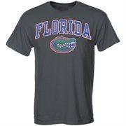 Men's New Agenda Charcoal Florida Gators Arch Over Logo T-Shirt