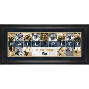 Pitt Panthers Framed 10
