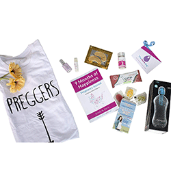 The Stork Bag The Perfect Pregnancy Gift