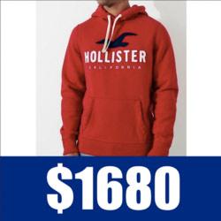 Hollister車繡貼布海鷗帽T