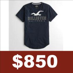 Hollister貼布刺繡logo短袖T恤