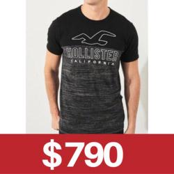 Hollister車繡logo短T