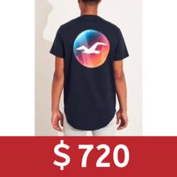 Hollister印花大海鷗短袖T恤