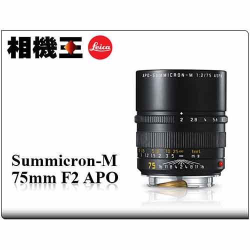 Leica Summicron-M 75mm F2 APO (公司貨)
