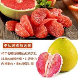 產銷履歷認證麻豆紅文旦禮盒(5斤±10%/箱)