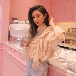 韓國春裝甜美復古雪紡衫