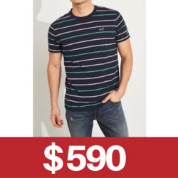 Hollister小海鷗短袖T恤