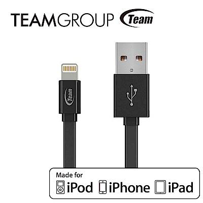 Team十銓科技 Apple原廠認證充電/傳輸線 TWC08