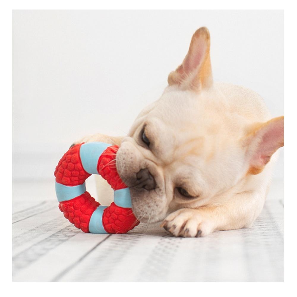 寵愛有家-寵物海星救生圈造型乳膠玩具(啃咬玩具)