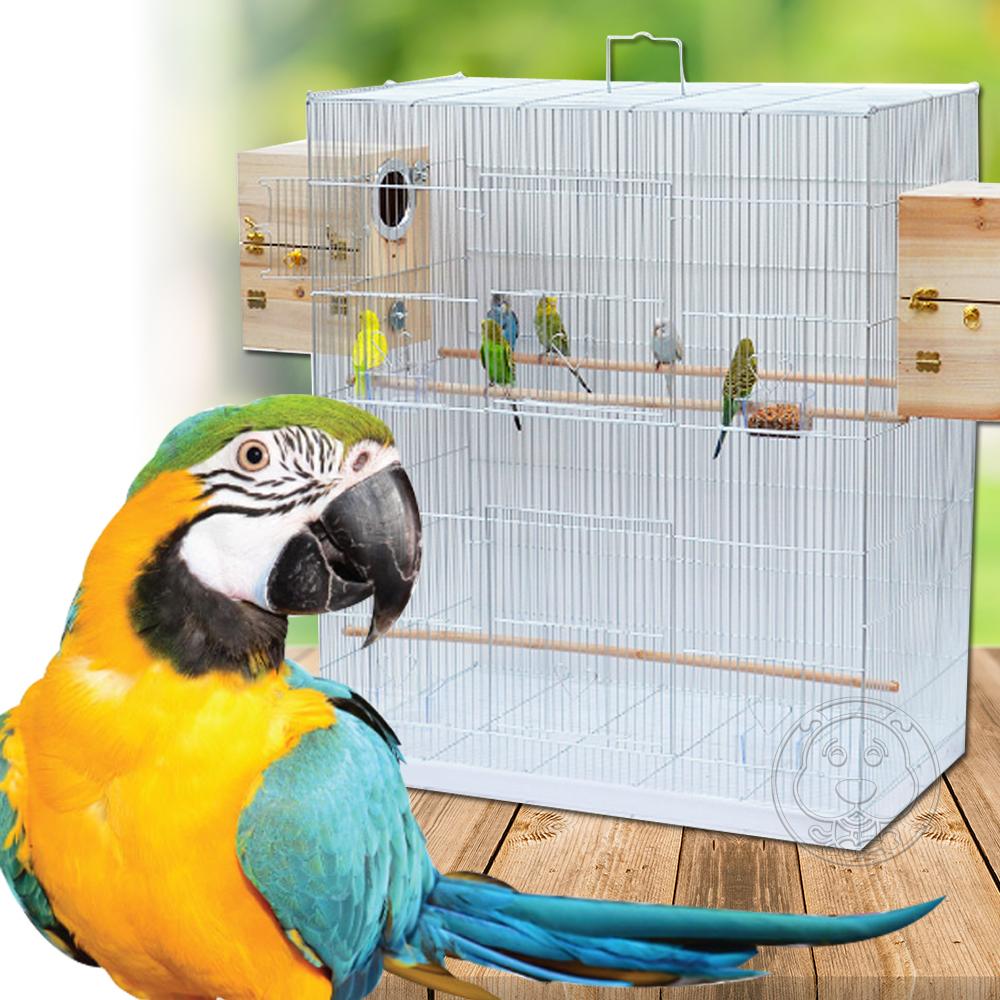 dyy》低碳鋼材加寬鐵鸚鵡|大鳥籠系列77*46*90.5cm