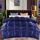 Hilton希爾頓 皇家克莉絲汀雙絲光羽絲絨被2.5KG
