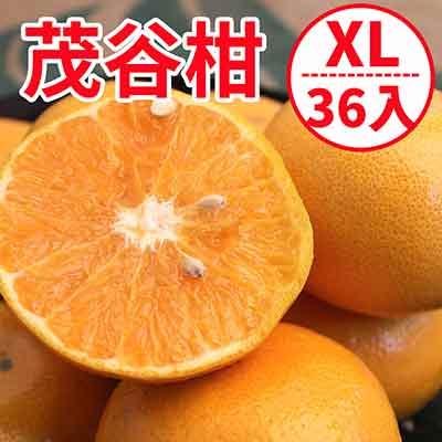 [甜露露]台灣茂谷柑XL超大36入宅配箱(15斤)