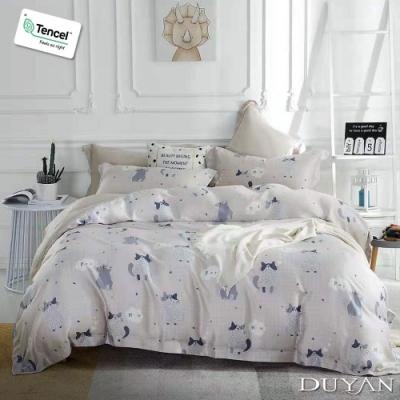 DUYAN竹漾-100%頂級萊塞爾天絲-單人床包枕套二件組-喵與暖歌