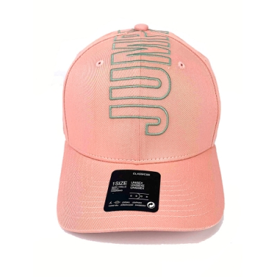 NIKE 老帽 帽子 喬丹  刺繡 休閒  男女 粉 CI3995623 JORDAN CLC99 CAP JM BLOCK