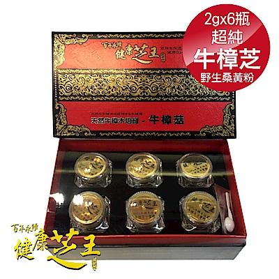 (6入禮盒組) 百年永續健康芝王 超純牛樟芝野生桑黃粉末禮盒 2g x6瓶