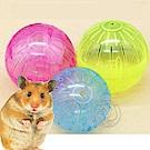 DYY》寵物倉鼠迷你運動滾球小跑球直徑10cm(顏色隨機)