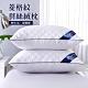 (2入組) Ania Casa 菱格紋枕頭 科技羽絲絨枕 飯店立體枕 抗菌防蟎枕芯 product thumbnail 1