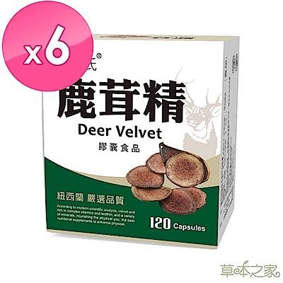 草本之家-紐西蘭鹿茸精120粒X6盒