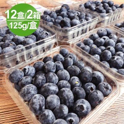 愛上水果 智利空運藍莓原裝箱12盒*2箱(約125g/盒)