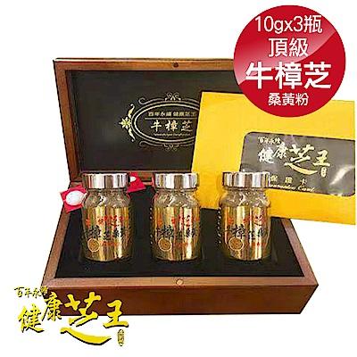 (3入禮盒組) 百年永續健康芝王 頂級牛樟芝桑黃研磨粉-10g x3瓶