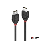 LINDY 林帝 BLACK HDMI 2.0 A公to公 傳輸線 1m (36471)