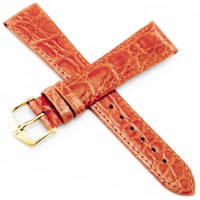 海奕施 HIRSCH Gen.Croco L 鱷魚皮手錶帶-橙