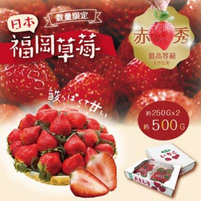 日本福岡草莓 1盒兩包