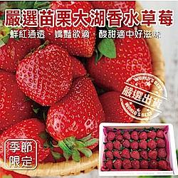 【天天果園】嚴選苗栗大湖香水草莓 x1盒