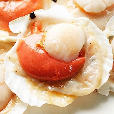 幸福小胖 特選帆立貝(半殼扇貝)1包 (500克/5~6顆/包)
