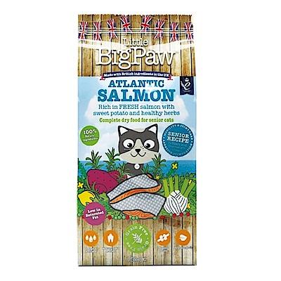 Big Paw英皇饗宴 大西洋鮭魚 高齡貓無穀糧 1.5KG