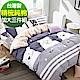 9 Design 奇爾大熊 加大三件組 100%精梳棉 台灣製 床包枕套純棉三件式 product thumbnail 1