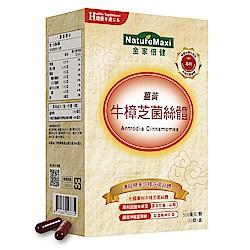 NatureMaxi金家倍健 陳德容代言牛樟芝菌絲體薑黃膠囊(