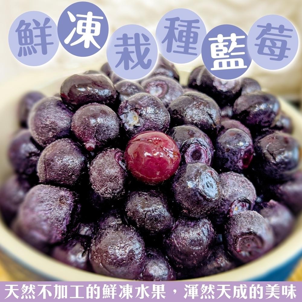 (滿699免運)【天天果園】冷凍美國栽種藍莓1包(每包約200g)