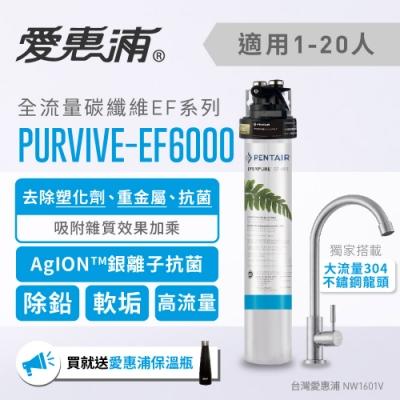 愛惠浦 EF series全流量強效碳纖維系列淨水器 EVERPURE PURVIVE-EF6000