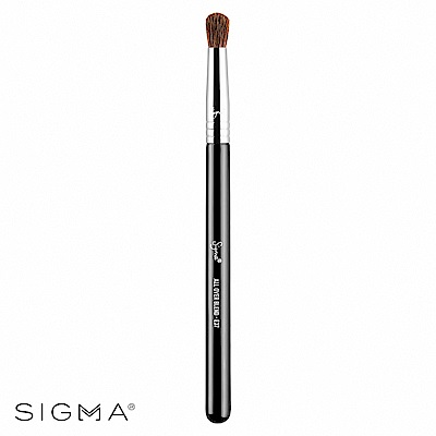 Sigma E37-圓頭眼影邊界暈染刷 All Over Blend Brush